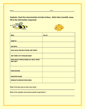 BEE TRAITS/ SCIENCE ACTIVITY
