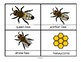 BEES Math, Science and Literacy Centers and Activities for Preschool & Pre-K