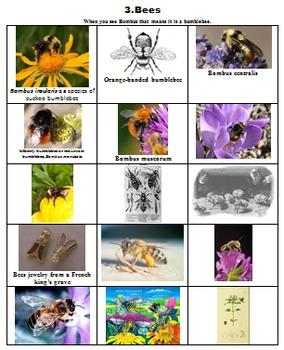 BEES PUBLIC DOMAIN CLIP ART