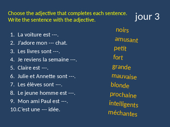 BELLWORK French adjectives ending in a consonant