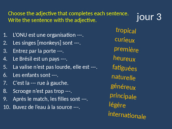 BELLWORK French adjectives in patterns