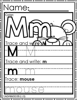 BIG Bear, SMALL Mouse (measurement)