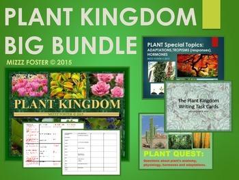 BIG Plant Kingdom Bundle