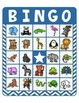 BINGO - Naming and Describing Zoo Animals