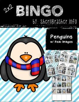 BINGO: Penguins   Real images   2x2