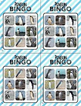 BINGO: Penguins | Real images | 3x3