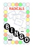 BINGO - RADICALS (Paper Version) + 24 BINGO MATS