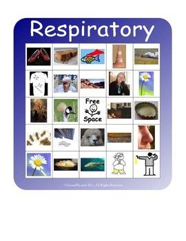 BINGO!  Respiratory System Terminology