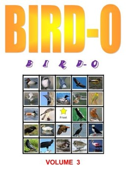 BIRD-O Bingo Game  Volume 3