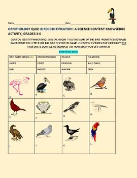 BIRD: ORNITHOLOGY QUIZ: CAN YOU GUESS EACH BIRD?