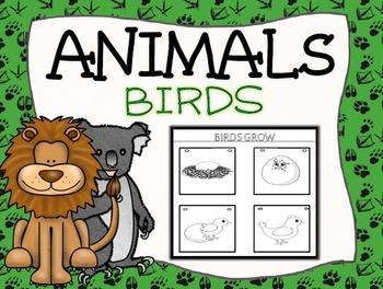 Birds Interactive Journal