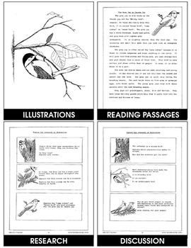 BIRDS IN WINTER Gr. 3-5