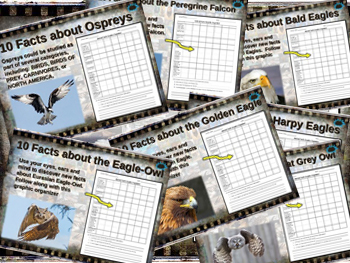 BIRDS OF PREY BUNDLE 7 PPTs GOLDEN BALD HARPY EAGLE OWLS P
