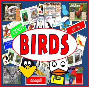 BIRDS RESOURCES LITERACY SCIENCE EYFS, KS 1-2 ANIMALS OWLS ROLE PLAY EARLY YEARS