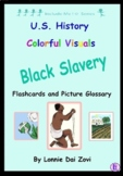 BLACK SLAVERY COLORFUL VISUALS Include Me © Series