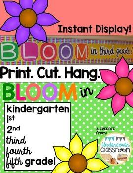 BLOOM Bulletin Board FREEBIE!
