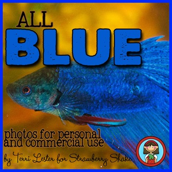 Photos Photographs BLUE Primary Color for Personal and Commercial Use