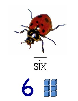 BLUE &  RED Number Posters 0-20 with # words and rods and units place value