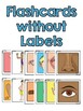 BODY PARTS:  Posters, Flashcards,  and Vocabulary Cards