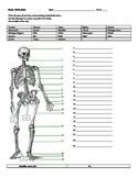 BONES WORKSHEET W/ANSWERS