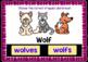 BOOM Cards (Digital Task Cards): Irregular Plural Nouns