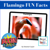 BOOM Cards: Interesting Facts About Flamingos