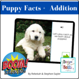 BOOM Cards Puppy Math Addition and Fun Facts