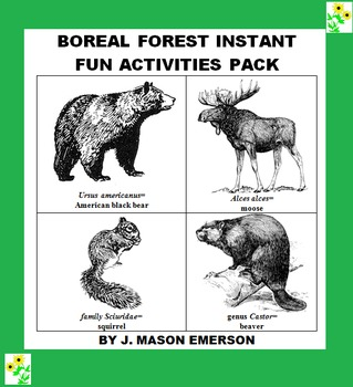 RE BOREAL FOREST INSTANT FUN ACTIVITIES PACK (END OF YEAR,