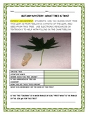 BOTANY: CAN YOU GUESS THE MYSTERY TREE?  A SCIENCE/ STEM ACTIVITY