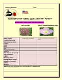 BOTANY: COMPARE TWO PINK WILDFLOWERS: A SCIENCE KNOWLEDGE