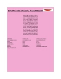 BOTANY: THE AMAZING WATERMELON PLANT WORD SEARCH