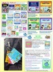 BRAG TAGS Silly Sam Classroom Compliments FREEBIE SAMPLE