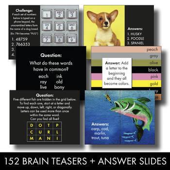 BRAIN TEASERS 4-Pack Bundle, Logic, Word Sense, Puzzles, Lateral Thinking – Fun!