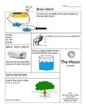 BRAIN WORK - Science STAAR REVIEW Fifth Grade- Homework