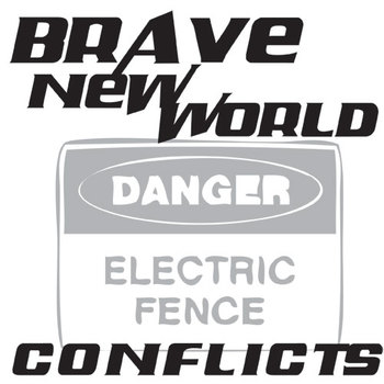 BRAVE NEW WORLD Conflict Graphic Organizer - 6 Types of Conflict
