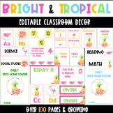 BRIGHT Tropical Classroom Decor EDITABLE- ALPHABET