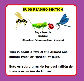 BUGS FUN EASY SCIENCE READING PACKET! (On Sale)