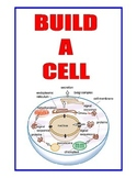 BUILD-A-CELL  2= GIANT  11x17-INCH  3-D Plant Cell and Ani