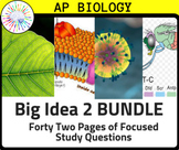 BUNDLE: AP Biology Review Guide for ALL of Big Idea 2: Cel