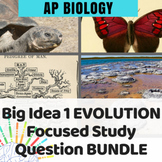 BUNDLE: AP Biology Review for Big Idea 1: Evolution and Natural Selection