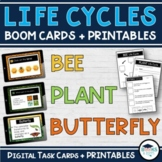 Life Cycle of Bee / Plant / Butterfly BOOM CARDS - Digital