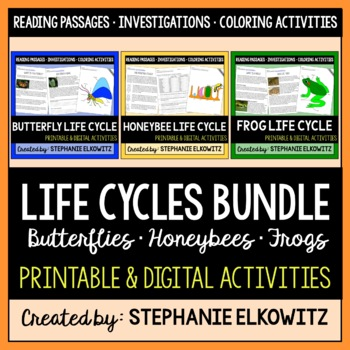 Butterfly, Frog and Honeybee Life Cycle Bundle