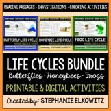 Butterfly, Frog and Honeybee Life Cycle Bundle