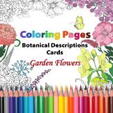 BUNDLE: Garden Flowers/ Coloring Pages and Botanical Description Cards