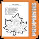 Fall Fun! BUNDLE Identifying Properties Algebra Arithmetic Activity Center