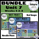 BUNDLE Kinder Wonders Unit 7-Weeks 1,2,3-Google Classroom Distance Learning