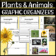 BUNDLE: NGSS Graphic Organizers for 1-LS1-1, 1-LS1-2, and 1-LS3-1