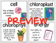 BUNDLE Science Word Wall and I Can Statements Grade 5