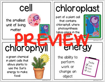 BUNDLE- NGSS & Inspire Science Vocabulary Word Wall -  3rd, 4th, & 5th Grades