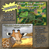 BUNDLE! Plant and Animal Adaptations Activities, Doodle Da